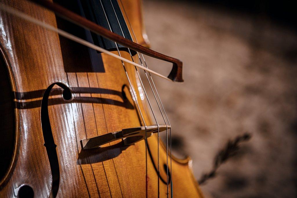 Cello im Steinbruch